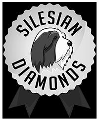 logo_small2