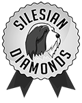 Silesian Diamonds